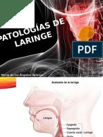 Patologias de Laringe