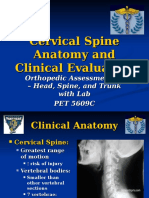 FIU - Cervical Spine