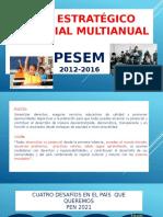 Plan Estratégico Sectorial Multianual 1