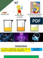 homeostasis - temperature