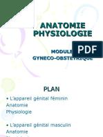 anatomiegynecologie
