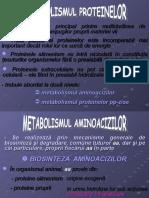 Metabolismul Protidelor - Metabolismul Aa