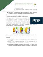 Mecanismo Acción enzimatico