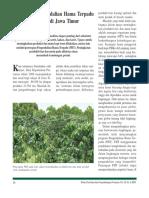 pengendalian hama terpadu pada tanaman kopi