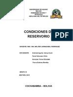 condiciones del reservorio