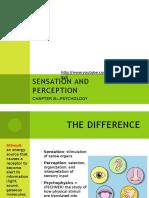 sensation and perception chp 8