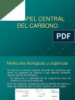 Carbono y Carbohidratos