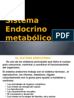 Clase Semestral SN Hormonal