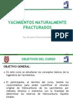Curso Completo Yacimientos Naturalmente Fracturados-1.pdf