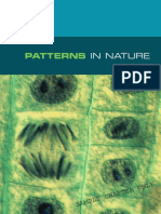 Biology in Focus Prelim Sample Chapter