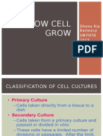 HOW CELL GROW&Batch Growth Kinetics