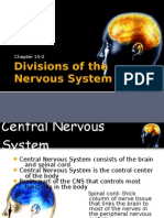 15-2 Divisions of the Nervous System Web