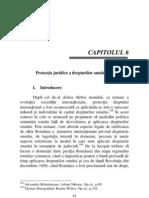 CAPITOLUL 6