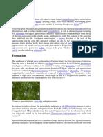 Appresoria (2).pdf