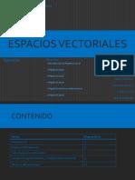 Matematicas Avanzadas Espacios Vectoriales