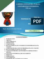 Presentación PPE