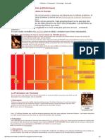 Préhistoire - Protohistoire - Chronologie - Hominidés