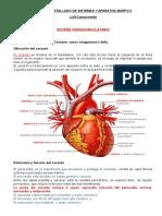 Morfofisiologia II (Sistemas y Aparatos)