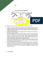 Wanda Aziizah Rahayu _1511015052_Metabolime Karbohidrat_FKM B 2015