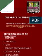 Desarrollo Embrio Fetal