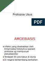 Kuliah 14b. Protozoa Usus