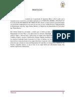 Informe Pfracticas Final 01