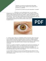 1-5-Fisiologia-practica-13