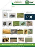Insect Identification Guide PDF for Lawn Lovers