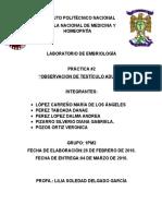 PRACTICA-2-EMBRIO (2).docx