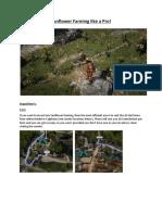 Sunflower Farming like a Pro.pdf