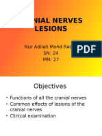 Cranial Nerves Lesions