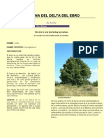 Comentari Text Científic OpenOffice