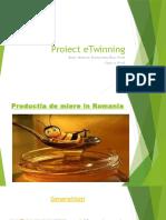 Proiect eTwinning
