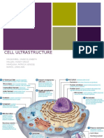 Cell Ultrastructure Edited