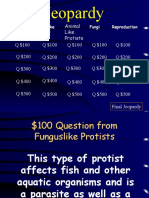 jeopardy protists and fungi