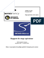 Rapport stage.pdf