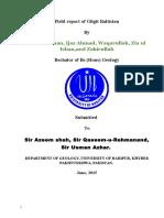 Geological Field Report of Gilgit Baltistan By Arsalan Khan