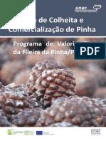 GUIA Colheita Da Pinha