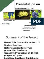 grapes yard Final.pptx