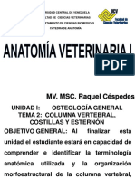 Columna Vertebral, Costillas y Esternon 2014