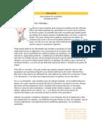 ¿Son realistas los resultados del Informe Pisa?