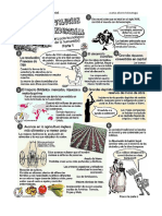 Revolución Agrícola e Industrial