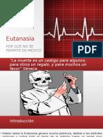Diapositivas Rocio Eutanasia.