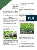 cultivos-hidroponicos