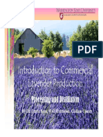 EXCELLENT Lavender Processing Distilling Web