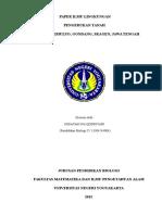 Paper Ilmu Lingkungan