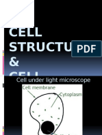 F4 C2 Cell Structure.pptx