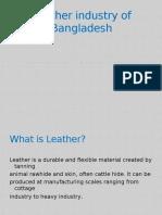 Leather Marketing