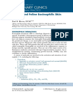 Canine and Feline Eosinophilic Skin Diseases