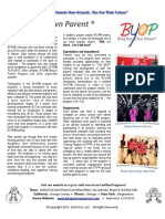 2 byop2016 factsheet programoverview-email